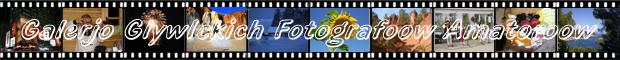 http://schlesien.nwgw.de/FGGG/film7.jpg