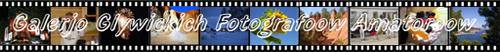 http://schlesien.nwgw.de/FGGG/film_1.jpg