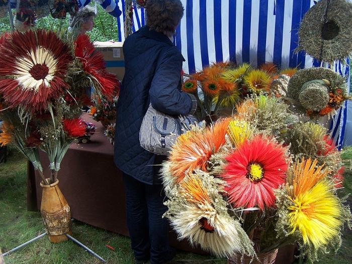 Galerjo Glywickich Fotografoow Amatoroow Jesienne Targi Rolnicze Olsztyn 2007 Piekne Kwiaty Z Klosow Zboz